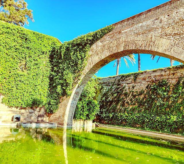 The Infinity Green •••#cruising #cruise #crew #sailing #travel #traveling #traveler #instatravel #instapassport #instatraveling #travelgram #travelingram #igtravel #travelblog #sea #travelstoke #architecture #arc #greenmood #palmademallorca #garden
