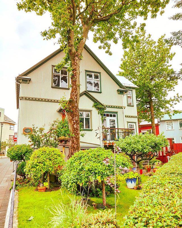 Iceland garden •••#reykjavík #iceland #polarcircle  #travel #travelling #traveler #instatravel #wanderlust #trip #lifeofadventure #doyoutravel #instapassport #instatraveling #mytravelgram #travelgram #travelingram #travelstoke #traveling #travelblog #instago
