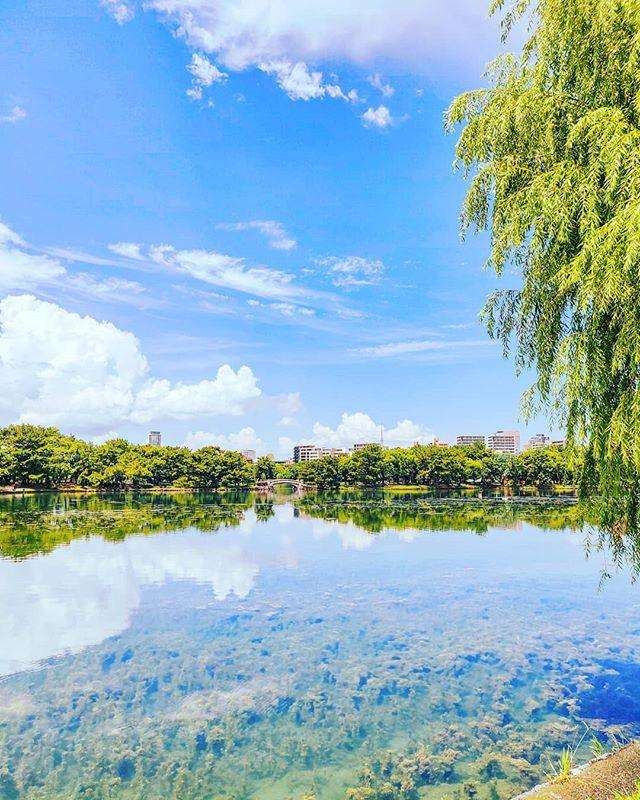 The park of my dreams•••#fukuoka #japan #maidirebanzai #park #lake #nature #reflections #travel #travelling #traveler #instatravel #wanderlust #trip #lifeofadventure #doyoutravel #instapassport #instatraveling #mytravelgram #travelgram #travelingram #travelstoke #traveling #travelblog #instago