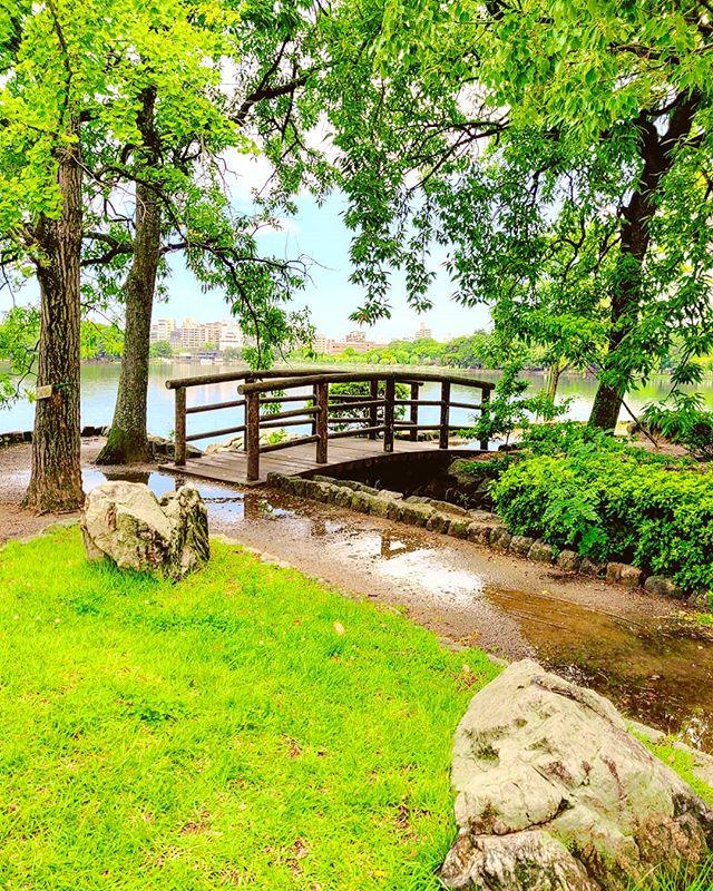 Just a minute after the storm •••#fukuoka #japan #maidirebanzai #park #lake #nature #green #trees  #travel #travelling #traveler #instatravel #wanderlust #trip #lifeofadventure #doyoutravel #instapassport #instatraveling #mytravelgram #travelgram #travelingram #travelstoke #traveling #travelblog #instago