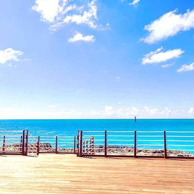 The place where you need to be in Ocean Cay🥂😎🤙🇧🇸 #island #travelislife #oceancaymscmarinereserve #oceancay #travelers #traveladdict #bahamas #traveling #travelling #travelblog #bahamas🇧🇸 #bahamas #travelingram #traveller #traveltheworld #travels #travelphotography #travelgram #oceancay #travel #instatravel #traveler #travelblogger #islandlife