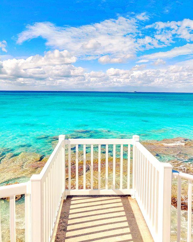 Just another stunning lookout... 🏝️🤙 #bimini #bahamas #travelblog #seaside #traveldiaries #traveler #travels #traveller #traveling #travelling #sea #travelphotography #seascape #seashore #travelgram #travelstoke #traveladdict #travel #island #travelphoto #sealife #islandlife #travelblogger #sea