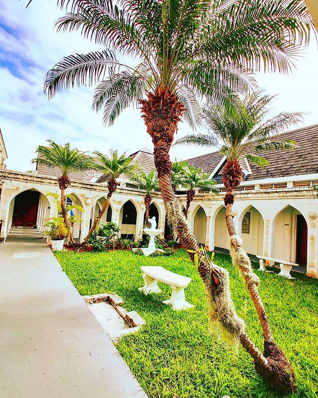 Nassau, cathedral garden 🤙 #nassau #Bahamas #lifeatsea #crew #crewlife #travellife #traveladdict #travelingram #travelstoke #travelgram #travelphotography #traveltheworld #garden #nassau #traveler #travelmore #travels #traveller #travelawesome #travelphoto #palm #travelbug #travelblog #traveldeeper #traveldiaries #traveling #travel