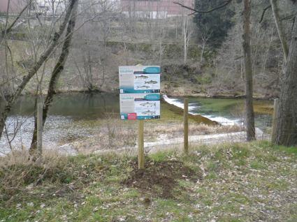 Panneaux truite-saumon implantés sur l'Allier (© FDPPMA48)