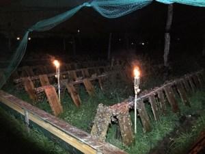 Visite NOCTURNE de l'exploitation OLIVET @ Loiret Escargots