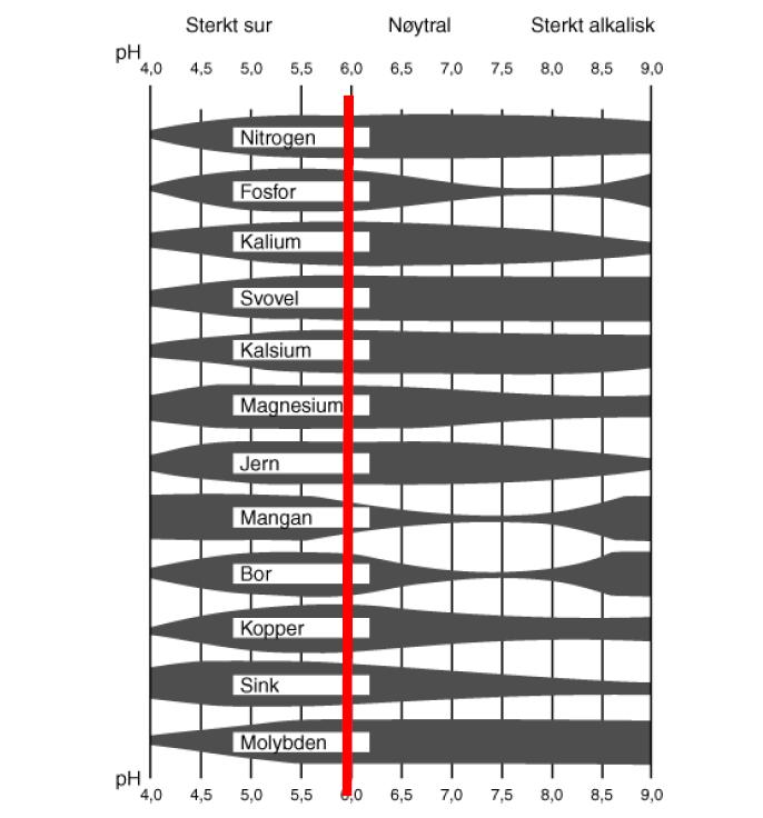 pH tabell