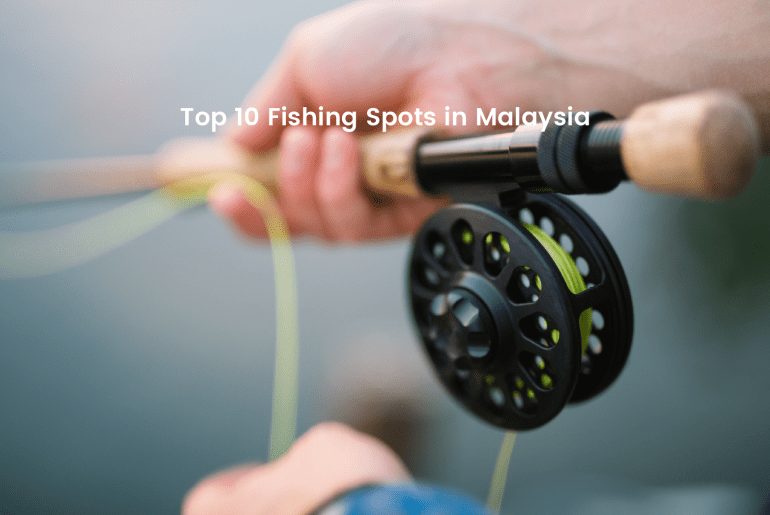 Top 10 Fishng Spots in Malaysia - See more local experiences at LokaLocal