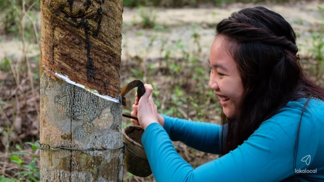 Rubber Tapping in Bekok - Find this experience at LokaLocal