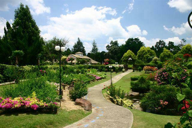 Educational park in Tenom consisting of various species of plants.
