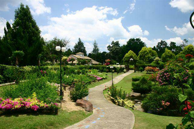 Educational park in Tenom consisting of various species of plants.
