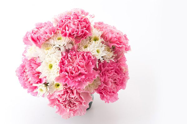 Mothers Day Carnations