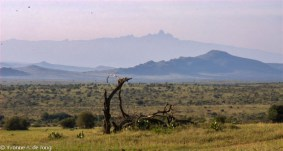 View on Mount Kenya from Lolldaiga Hills Ranch