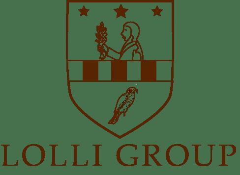 Lolli Group IT ERP