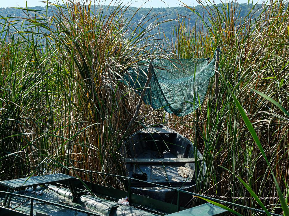Barques et roseaux sur le lac SHAR