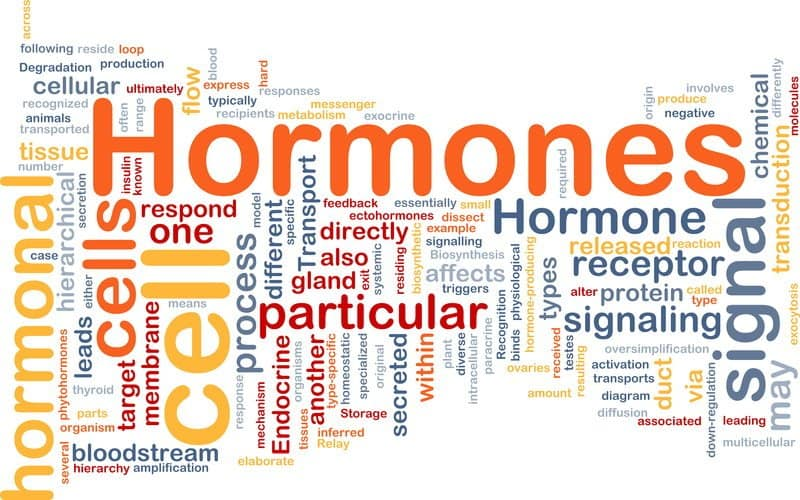 10 Crazy Facts About Hormones And How They Affect Our Lives