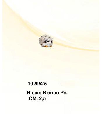 CBR1029525