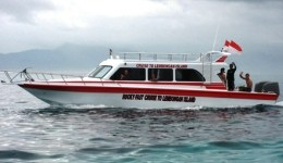Rocky Fast Boat