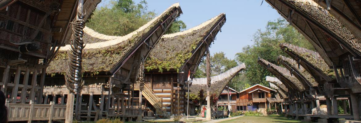 Toraja Sulawesi Traditional House