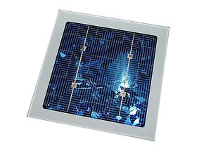 Dai lombrichi la materia prima per celle fotovoltaiche e Led