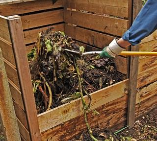 Lombricoltura, ecco come evitare cattivi odori e insetti