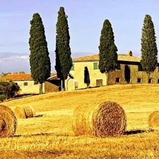 Lombricoltura, qual è il terreno più adatto?