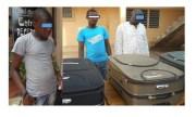Lutte contre la criminalité faunique : Trois trafiquants de peaux de pythons royaux arrêtés à Lomé