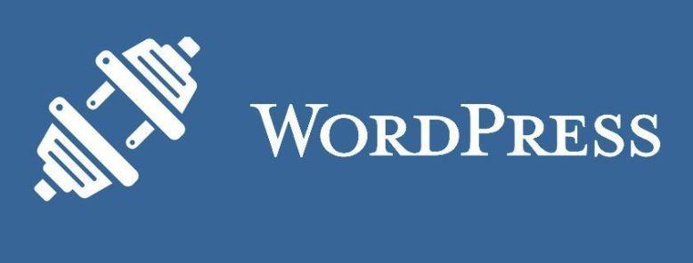 Los 30 plugins más populares de WordPress (Infografía)