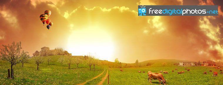 Free Digital Photos - Banco de fotografías libres de derechos de autor