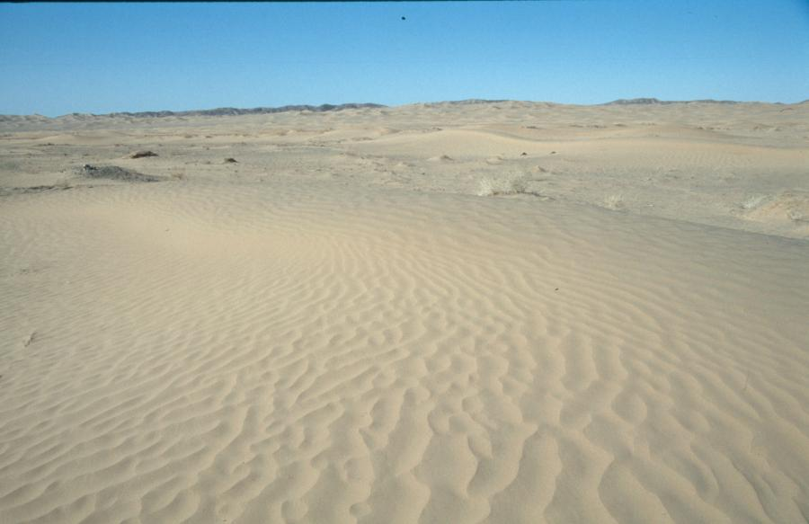 https://i2.wp.com/www.lomo-expedition.de/PK_Nishki_2004_02_28_Sand_-_Sand_-_Sand....jpg