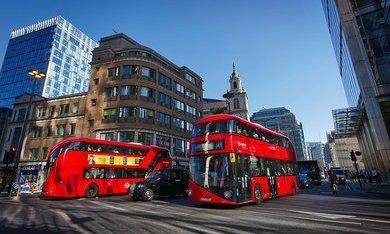 Londen Bus tour