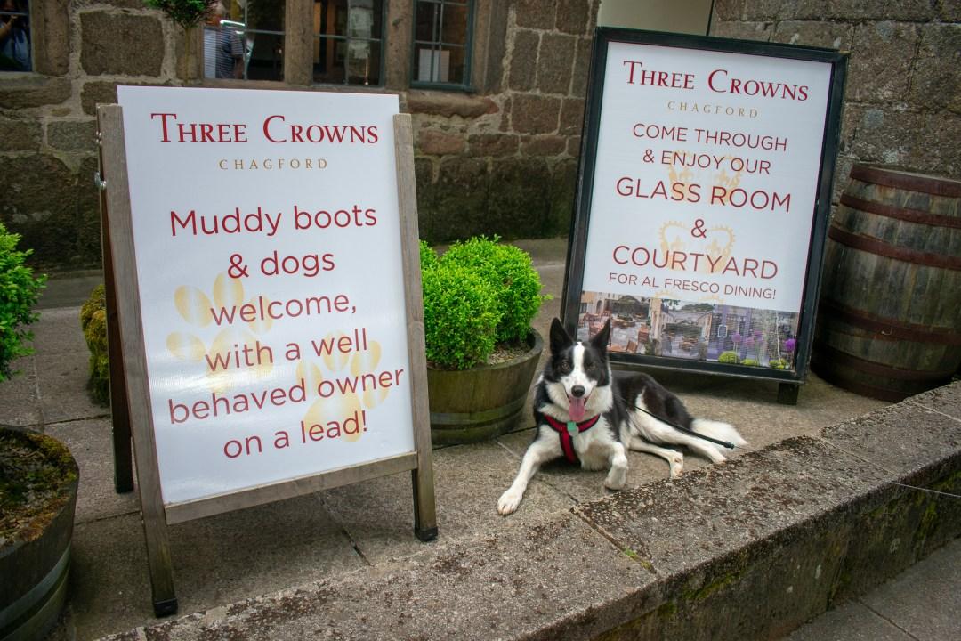 Dog Friendly Days Out in Devon Three Crowns Chagford