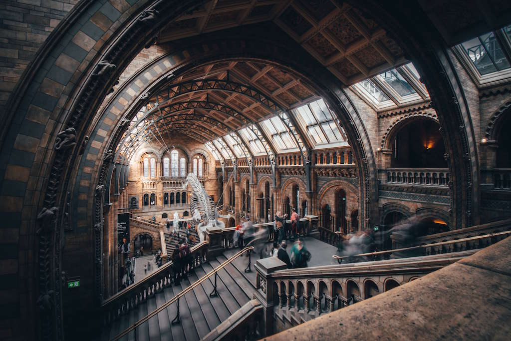 Central Hall with Whale skeleton in Natural History Museum London