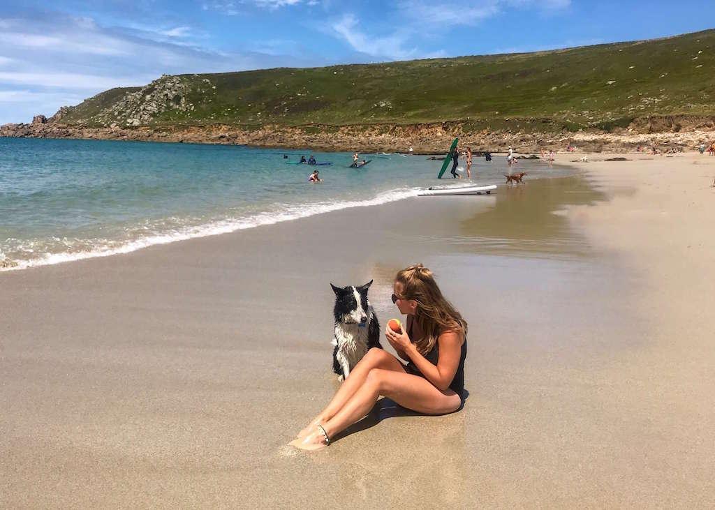 Dog on Gwenver Beach Cornwall