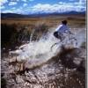 mountainbikingacrossacreek_thumb.jpg