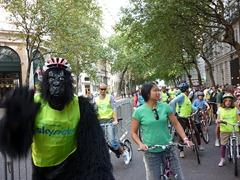 skyride-gorilla