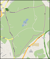 Richmond Park London Cycle Route