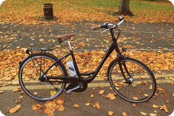 Autumn leaves as we head into the winter (eBike: Spencer & Ivy)