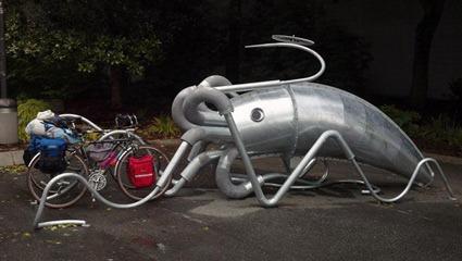giant-squid-rack