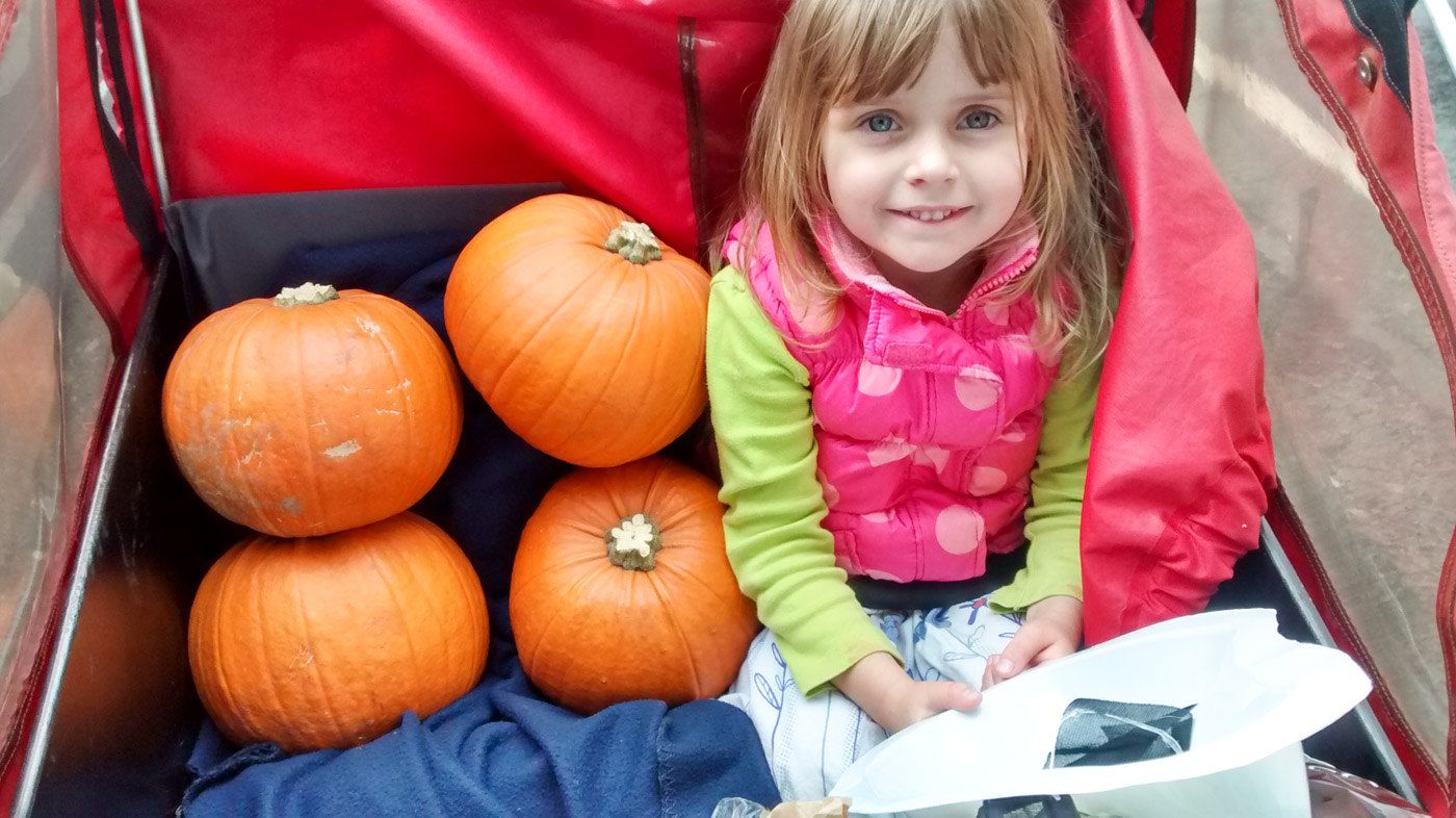 Pumpkins in a cargo bike