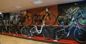 Electric bike sales