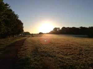 The sun rise in Epping Forest on my microadventure