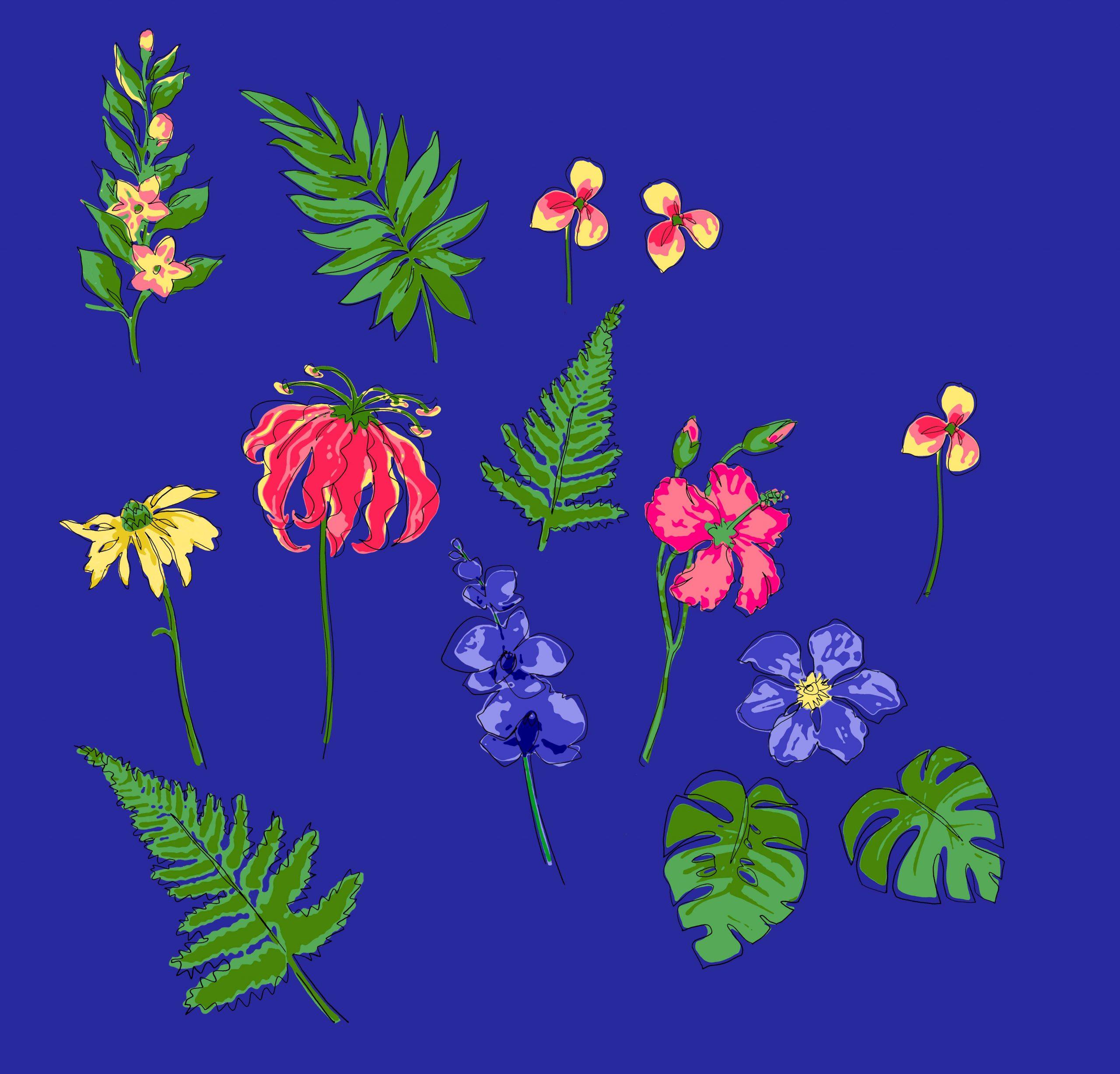 drawn flower artwork
