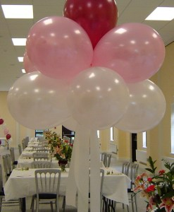 Cloud Nine Helium Balloon Cluster