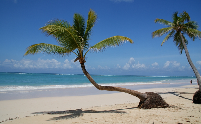 social media exotic beach