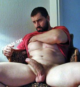 daddy muscle big bullocks