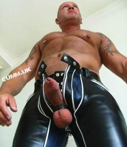 100 penis beauty leather daddy hung thick dick need sucking