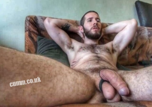 hairy-belly-Big-Beefy-British-Bulls-hung