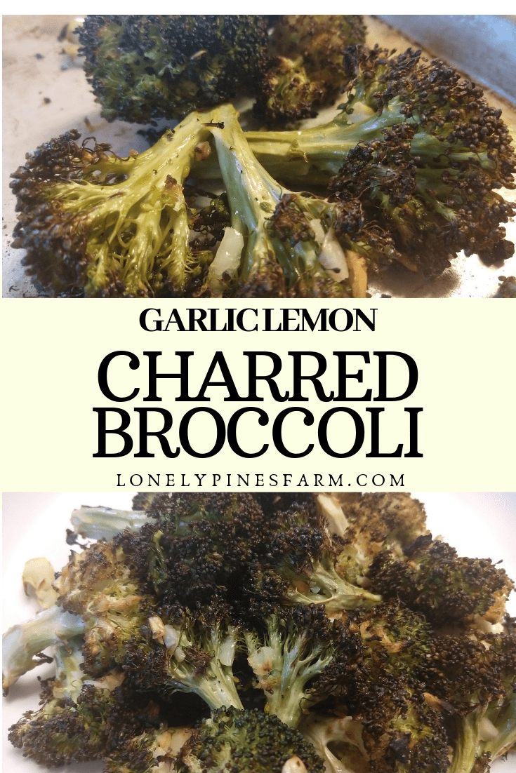 I'll walk you through the absolute best preparation for broccoli, charred with garlic & lemon. I promise that you won't be disappointed!