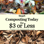 Compost is amazing on so many levels. Not only is it a nutrient-rich soil amendment that your plants will love, but it also drastically cuts down on your waste. It's a win-win! I'll walk you through how you can start composting today, at home, for $3 or less.