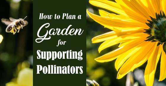 How to Plan a Pollinator-Friendly Garden